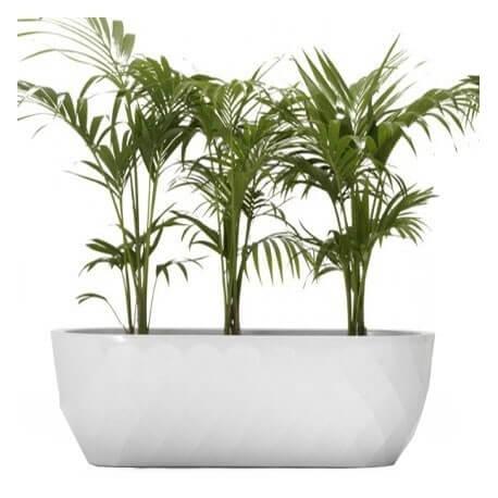 VASES - jardinière basse H45 cm