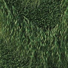 BUZZISKIN PRINTED - rouleau acoustique motif Green 2