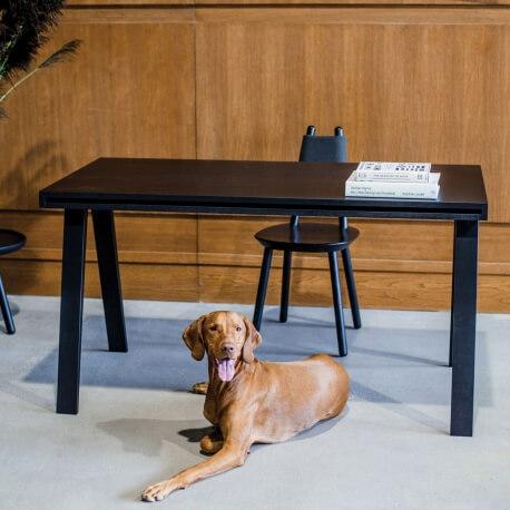 DESK 4.9 - bureau 140 x 70 cm frêne teinté noir