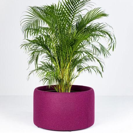 BUZZIPLANTER - jardinière acoustique ronde ø 80 cm