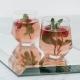 RADIANT - 2 verres en verre soufflé à la main