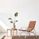 ICONICA - fauteuil hêtre et cuir Elmosoft